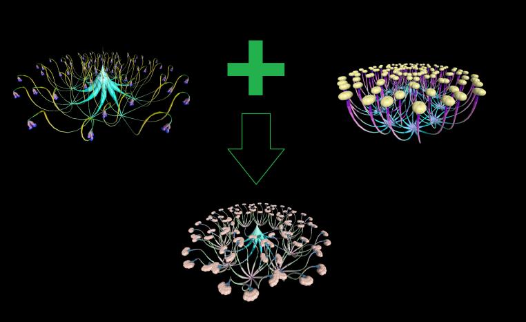genetic-fractakl-cross-1